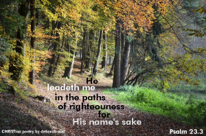 For Your Name's Sake ~ CHRISTian poetry by deborah ann